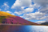 Colorful landscape scenery of Pentland hills slope covered by vi — Foto Stock