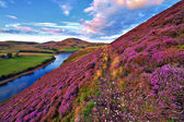 Beautiful landscape of scottish nature — Stok fotoğraf
