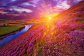 Beautiful landscape of scottish nature — Foto Stock