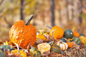 Variety of Pumpkins on hay for Halloween — Stock Photo