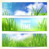 Set of Horizontal Banners with Grass and Skies. Vector illustration, eps10, editable. — Stock Vector