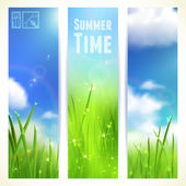 Set of Vertical Banners with Grass and Skies. Vector illustration, eps10, editable. — Stock Vector