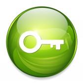 Key web icon — Stock Vector