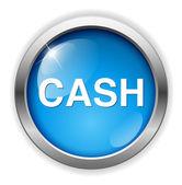 Cash web icon — Stock Vector