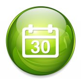 30 calendar button icon — Stock Vector