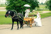 Bride and groom in carriage — Stock Photo