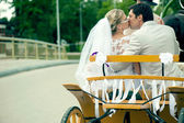 Bride and groom kissing in carriage — Stock Photo