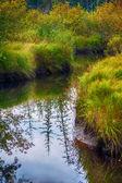 Autumn river scene — Stock Photo