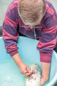 Vet giving injection to fish — Stock Photo