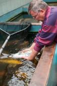 Vet with fish — Stock Photo