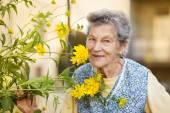 Senior woman with flower in garden — Stock Photo