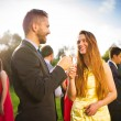 Wedding guests clinking glasses — Stock Photo #54215815