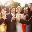 Wedding guests with the newlyweds — Stock Photo #54215741