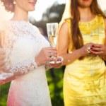 Bride with bridesmaids — Stockfoto #54215771