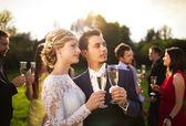 Recém-casados tilintar de copos — Fotografia Stock