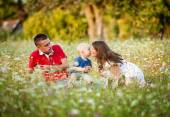 Happy family with little boy sitting on meadow — Stock Photo