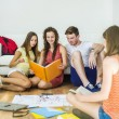 Students studying together — Stock Photo #55630033