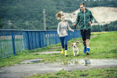 Couple walk beagle dog in rain. — Stock Photo