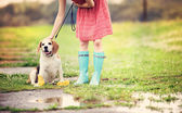 Woman in wellies walk her beagle dog — Stock Photo