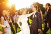 Newlywed couple dancing with bridesmaids and groomsmen — Foto de Stock