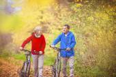Active seniors having walk with bikes — Foto de Stock