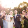 Newlywed couple and their friends — Stock Photo #63380849