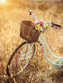 Bicycle with basket full of flowers — Stock Photo