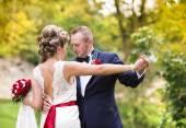Wedding couple  enjoying romantic moments — Zdjęcie stockowe
