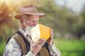 Farmer with organic cheese — Stock Photo