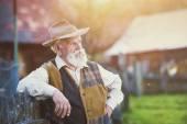 Senior farmer in summer — Stock Photo