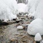 Winter mountain stream. — Stock Photo #62262011