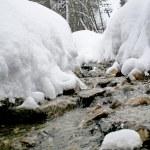 Winter mountain stream. — Stock Photo #62262183