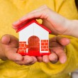 Protect your house — Stock Photo #58739951