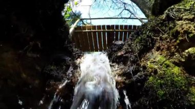 Pure fresh water waterfall in forest. Holy spring — Stock Video