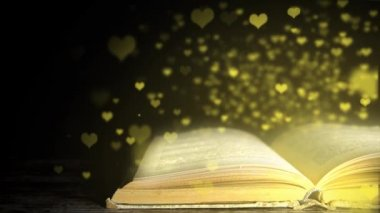 The magic book. Favorite book. Book with angry. romantic book — Stock Video