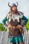 Viking in his territory — Stock Photo