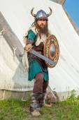 Strong viking is defending near his territory — Stock Photo