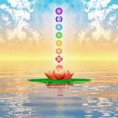 Sacred Lotus And Chakras — Stock Photo