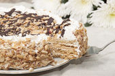 Cake with honey shortcakes, curd cream with nuts and chocolate. — Stock Photo