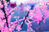 Shiny pink artificial flowers lights — Stock Photo