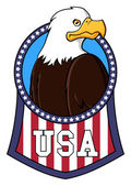 USA eagle — Stock Vector