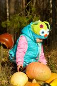 In the forest, a small child with pumpkins — Stock Photo
