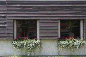 Flower boxes on window sills — Stock Photo