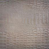Snake pattern imitation, background — Stock fotografie