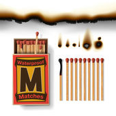 Matchbox and matches — Stock Vector