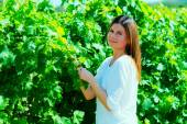 Woman  walks on a vineyard — Stock Photo