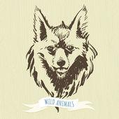 Marker hand-drawn forest animals: fox — Stock Vector
