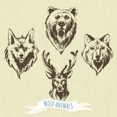 Set of marker hand-drawn forest animals: wolf, bear, deer, fox — Stock Vector