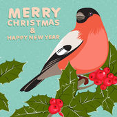 Christmas background and greeting card with bullfinch and holly  — Stock Vector