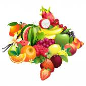 Arrow composed of different fruits with leaves — Stock Vector